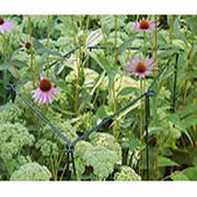 Flower Links plant supports for flower,  shrubs and vegetables